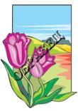 Цветочки в картинках